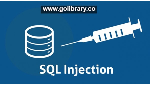 Hacking remote database using SQL injection